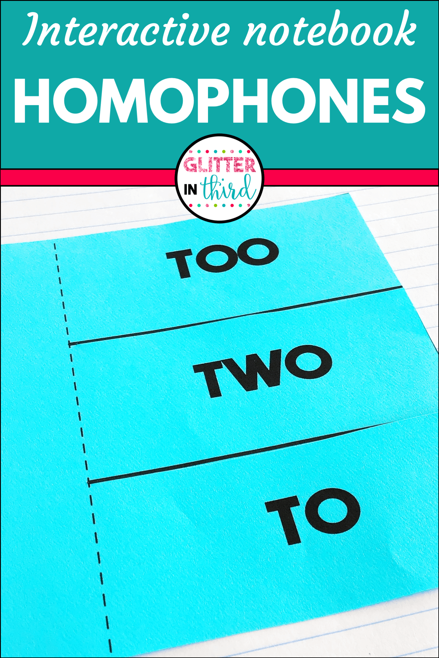 Homophones Interactive Notebook In
