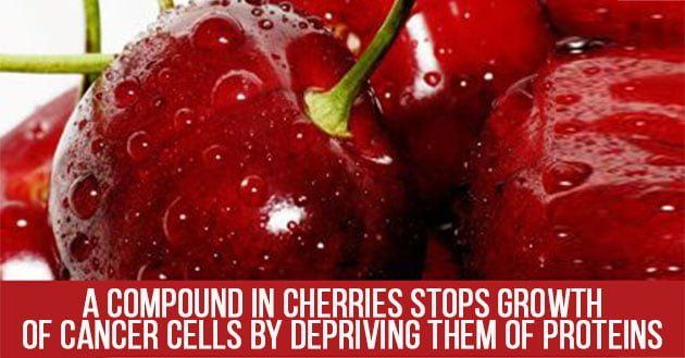 10 Health Benefits of Cherries (2019 UPDATE) | Culinary Advice and