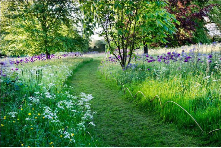 Landscape Ideas On A Budget A Grass Path Is An Alternative To Expensive Stone Or B Green Backyard Landscaping Highgrove Garden Garden Design Ideas On A Budget
