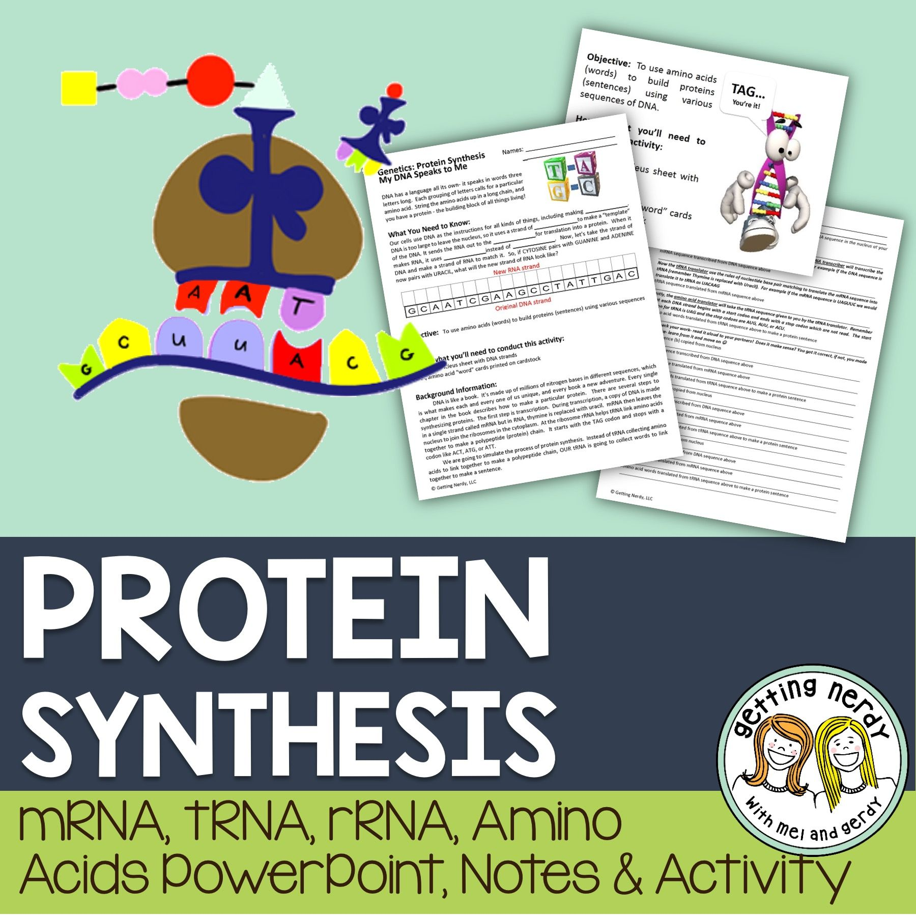 Protein synthesis mrna dna rrna powerpoint and handouts protein synthesis mrna dna rrna powerpoint and handouts malvernweather Choice Image