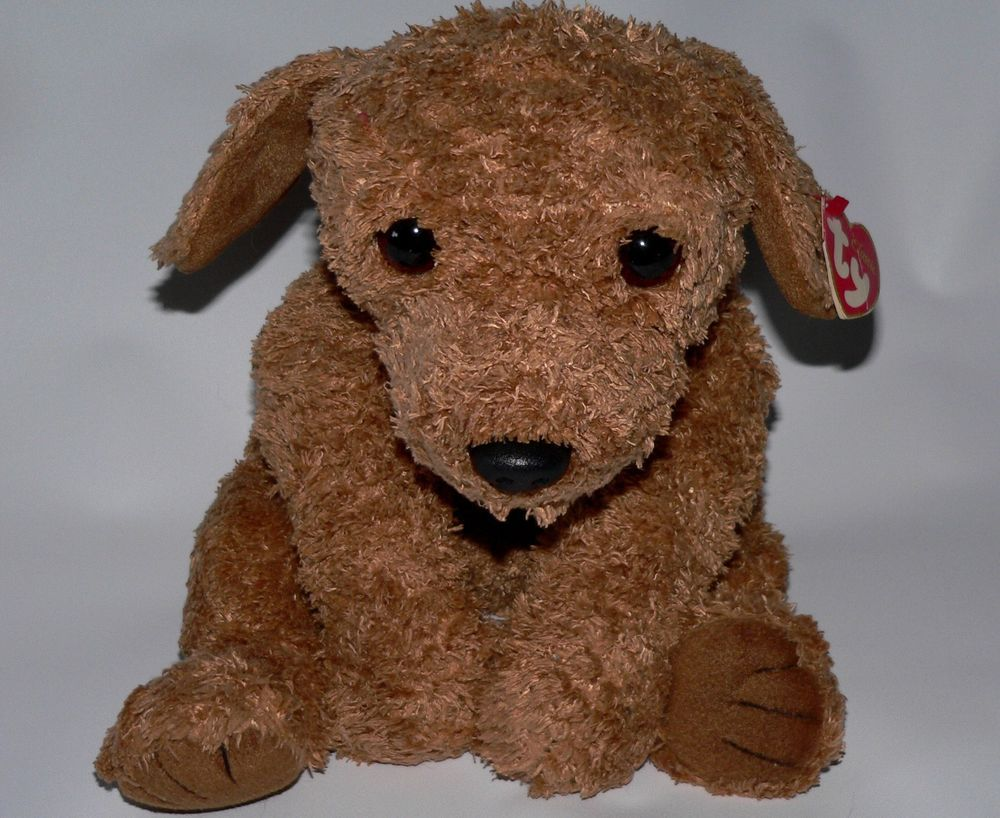 TY Classic plush Scooter puppy dog floppy soft brown tag