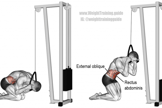 Kneeling cable crunch | Excercise | Pinterest | Exercises, Workout ...