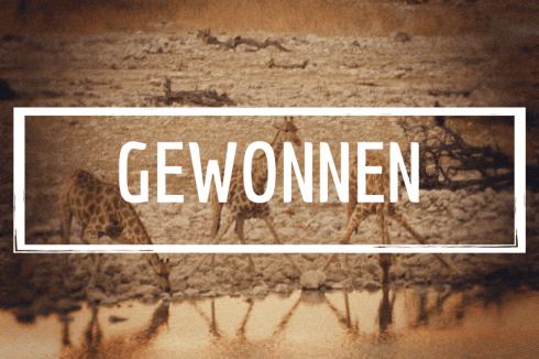 Giraffen am Wasserloch (fineprint seidenmatt auf Holz 20x15 cm)