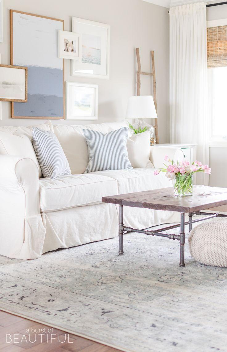 12+ Modern farmhouse living room rug info