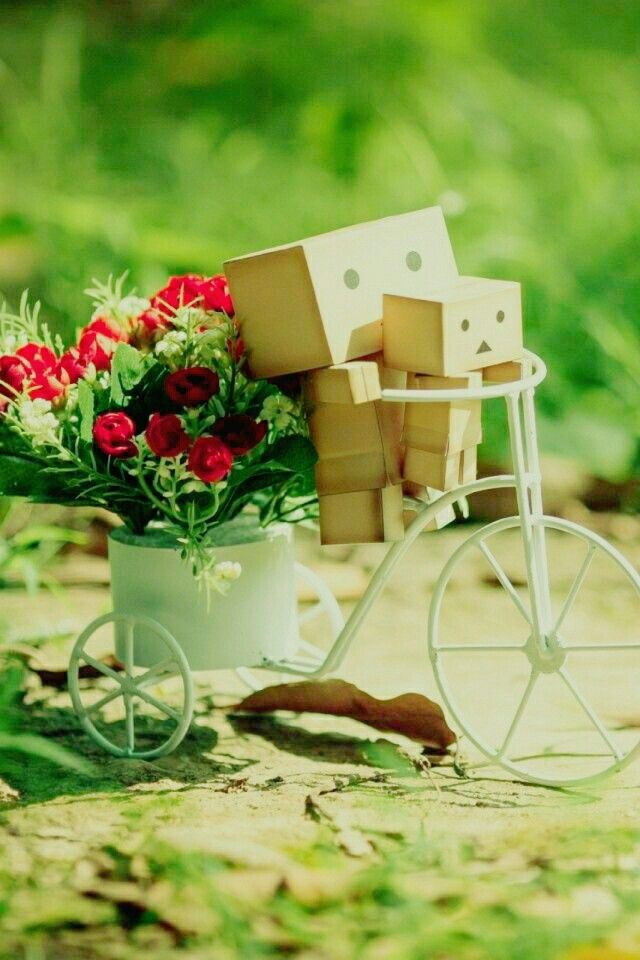 Pin By Rooman Haseeb On Colour S Splash Danbo Mobile Wallpaper Cute Wallpapers