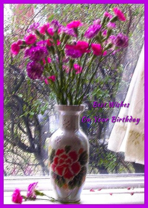 Carnations Birthday Greeting Greeting Card