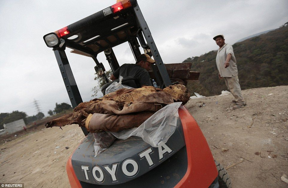 A worker drives a forklift with discarded coffins as a mummified corpse lies on the back at the Verbena cemetery in Guatemala City February 28, 2013