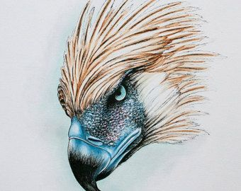 philippine eagle etsy tattoo ideas pinterest philippine rh pinterest com philippine eagle tattoo designs Filipino Tribal Warrior Tattoos