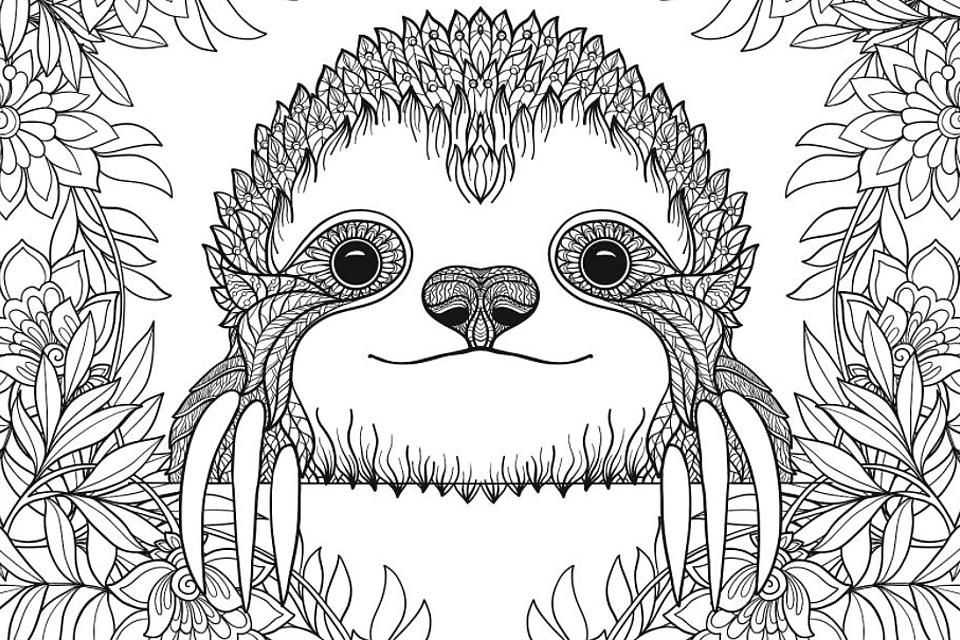 Sloth Coloring Pages Free Printable Coloring Pages Of Sloths To Help You Slow Down Relax Like A Sloth Printables 30seconds Mom Free Printable Coloring Pages Coloring Pages Printable Coloring