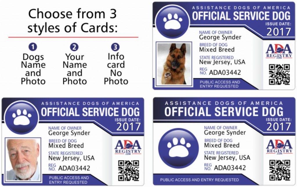 Service Dog ID Card Gallery Service Dog Registry