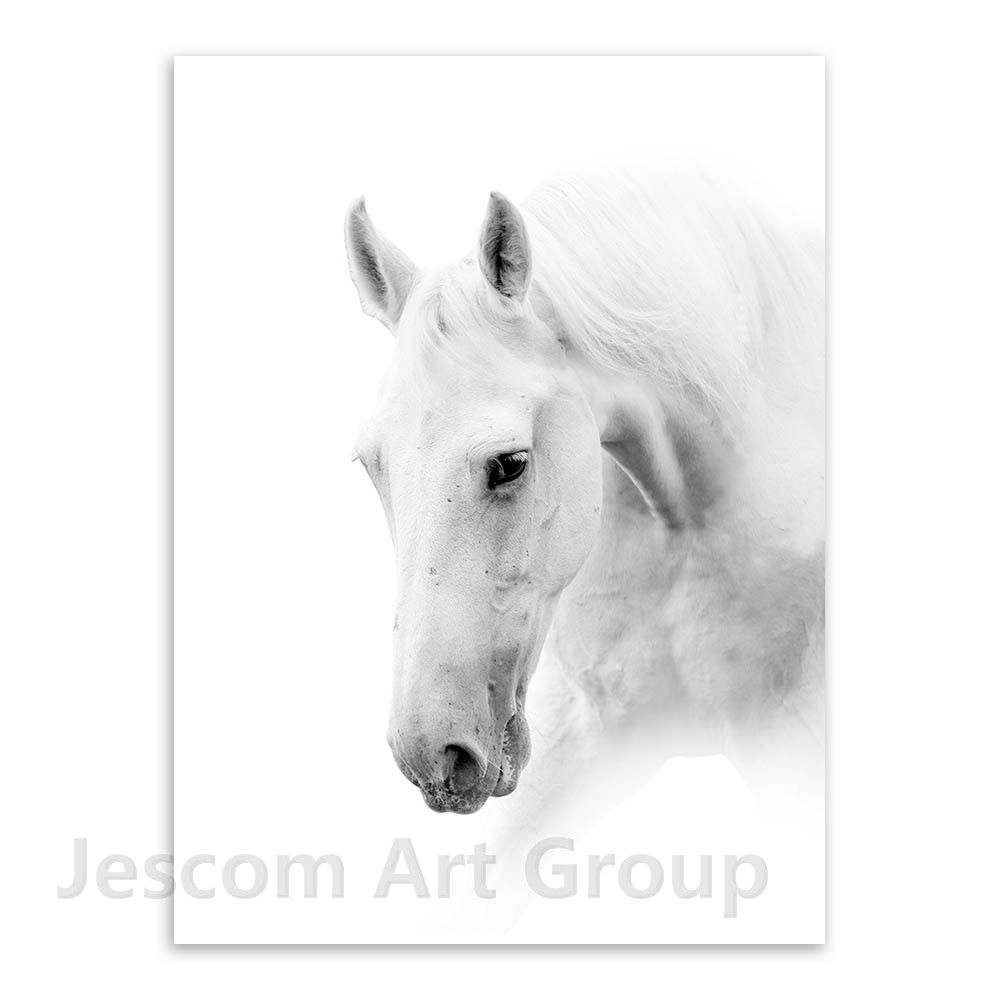 One Piece/sets Digital Canvas Print White Horse Painting Modular ...