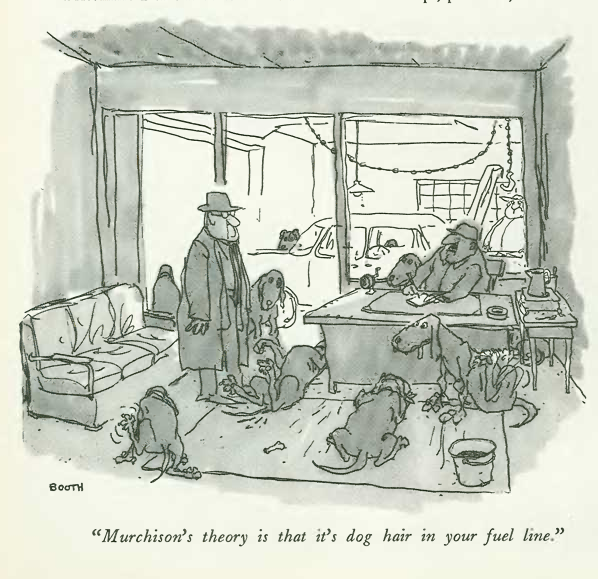 """murchisons 