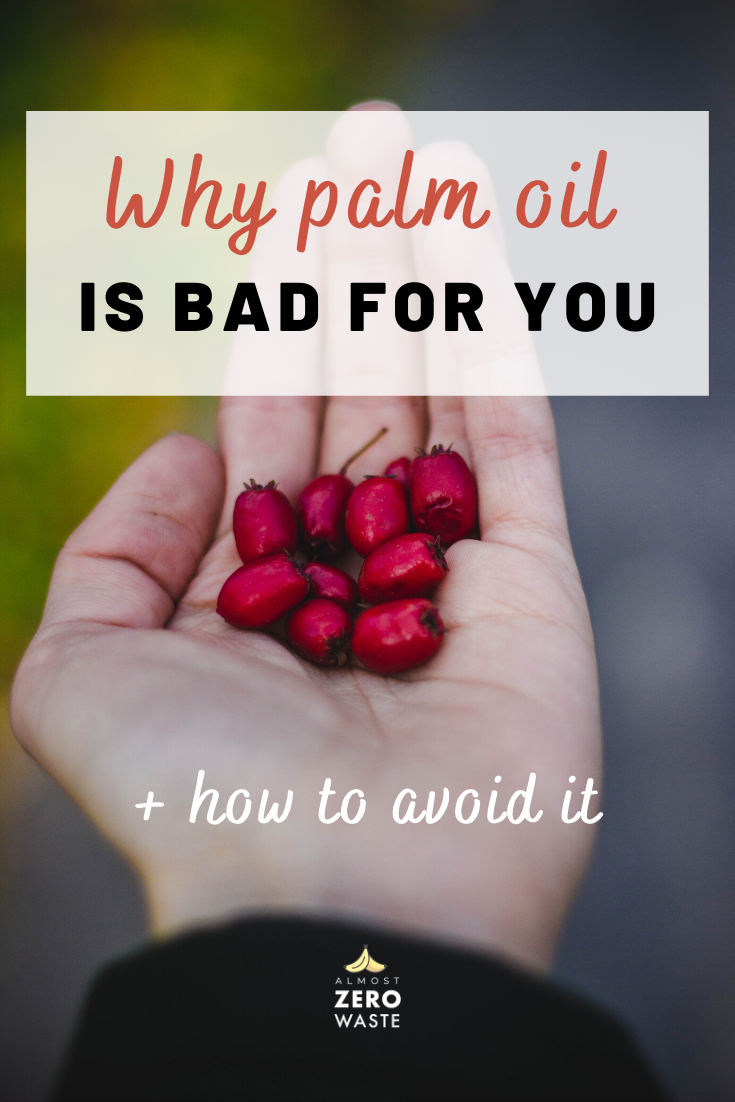 9 Reasons Why Palm Oil Is Bad For You in 2020 Palm oil