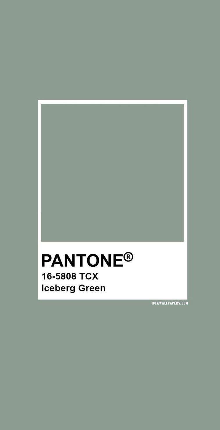 #pantone2020