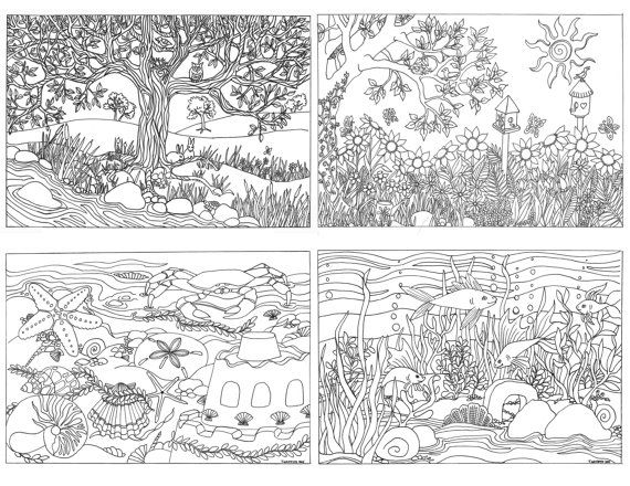 Printable Set Of 4 Assorted Nature Scenes Coloring Pages Coloring For Adults Coloring Pages Nature Coloring Pages Abstract Coloring Pages