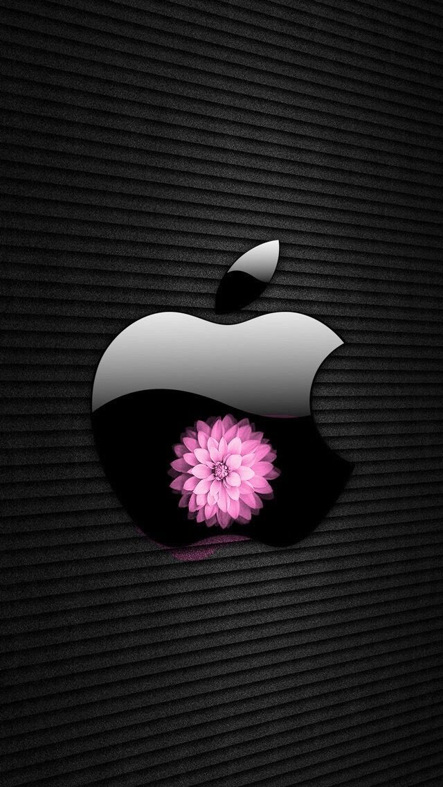 Pin by Jolyn Zimmer on Cool Pics Apple wallpaper, Apple