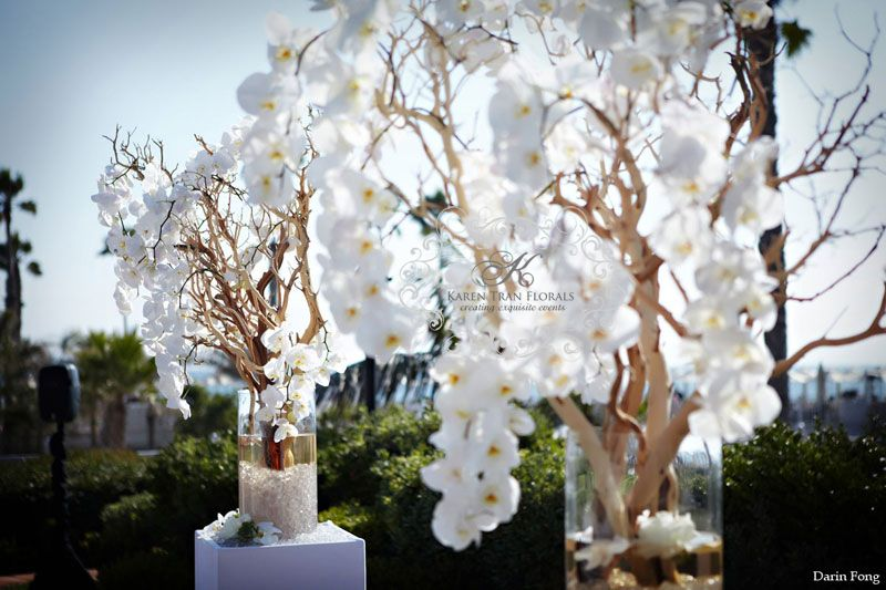 Manzanita Orchid Trees Pea Teal And Fuchsia Wedding At The Hotel Del Coronado San