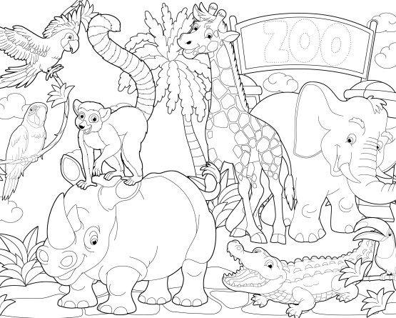 Gratis målarbild – gå på zoo! | dibujos para colorear | Pinterest