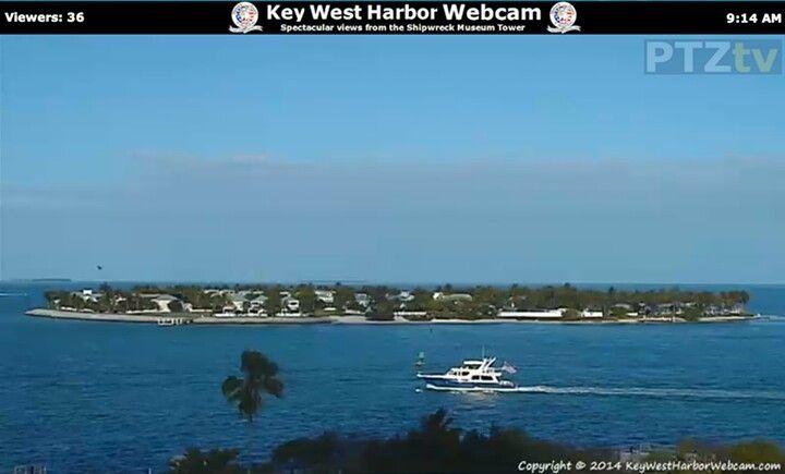Celebrity cruises webcams