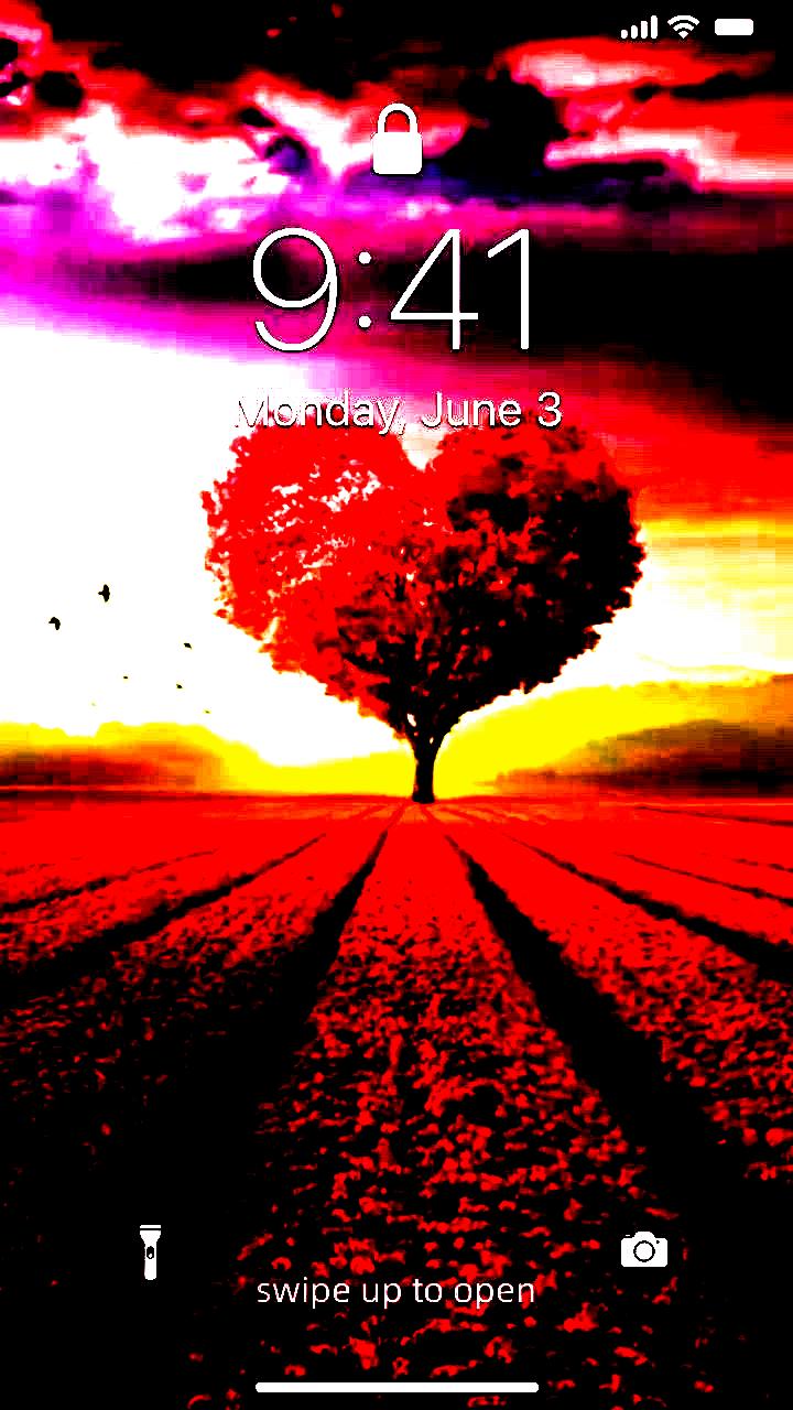 Karolina Szymanska On Instagram Apple Blossoms In 2020 Beautiful Wallpapers Harry Potter Wallpaper Iphone Wallpaper