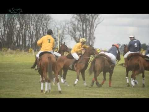 Pato de Primera TV - 2do PROGRAMA 15-09-16 - YouTube