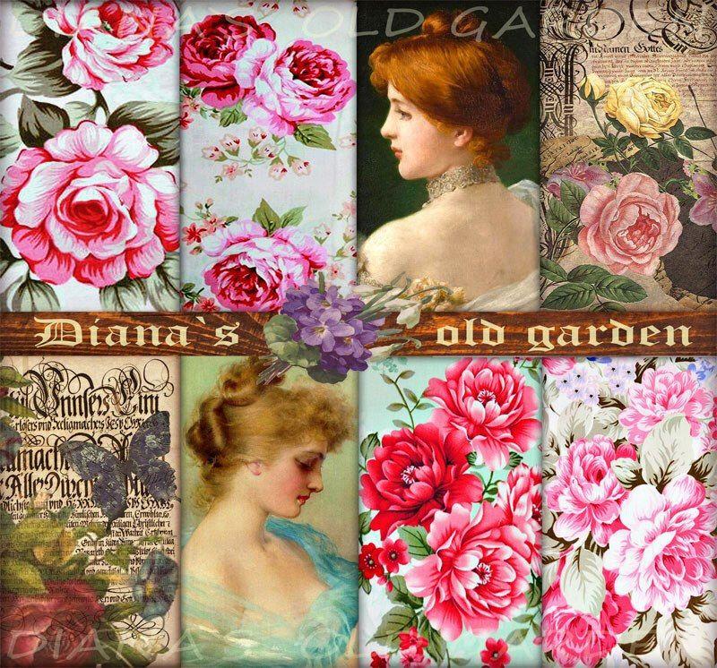 Victorian Rose Digital Paper. Digital Scrapbook Decoupage paper. Shabby Сhic Victorian Download. Floral Digital Backgrounds DG-48 de DianaGarden en Etsy https://www.etsy.com/es/listing/194726923/victorian-rose-digital-paper-digital