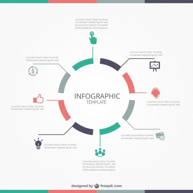 Modèle infographique ronde | Infographics, Infographic and Vector stock