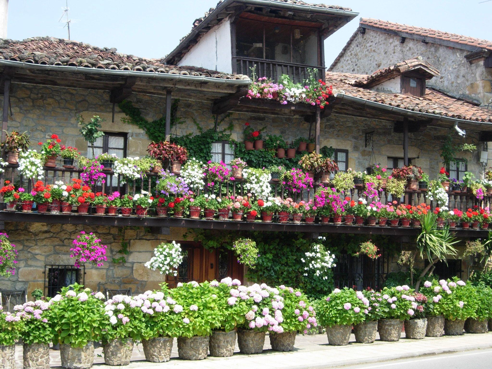 Balcones con macetas buscar con google balcones y for Jardines verticales en balcones
