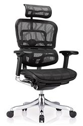 Eurotech Ergo Elite Office Chair With Black Patterned Mesh