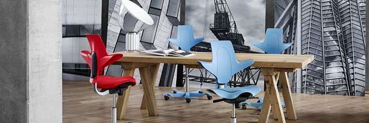 HÅG Capisco Puls from Scandinavian Business Seating