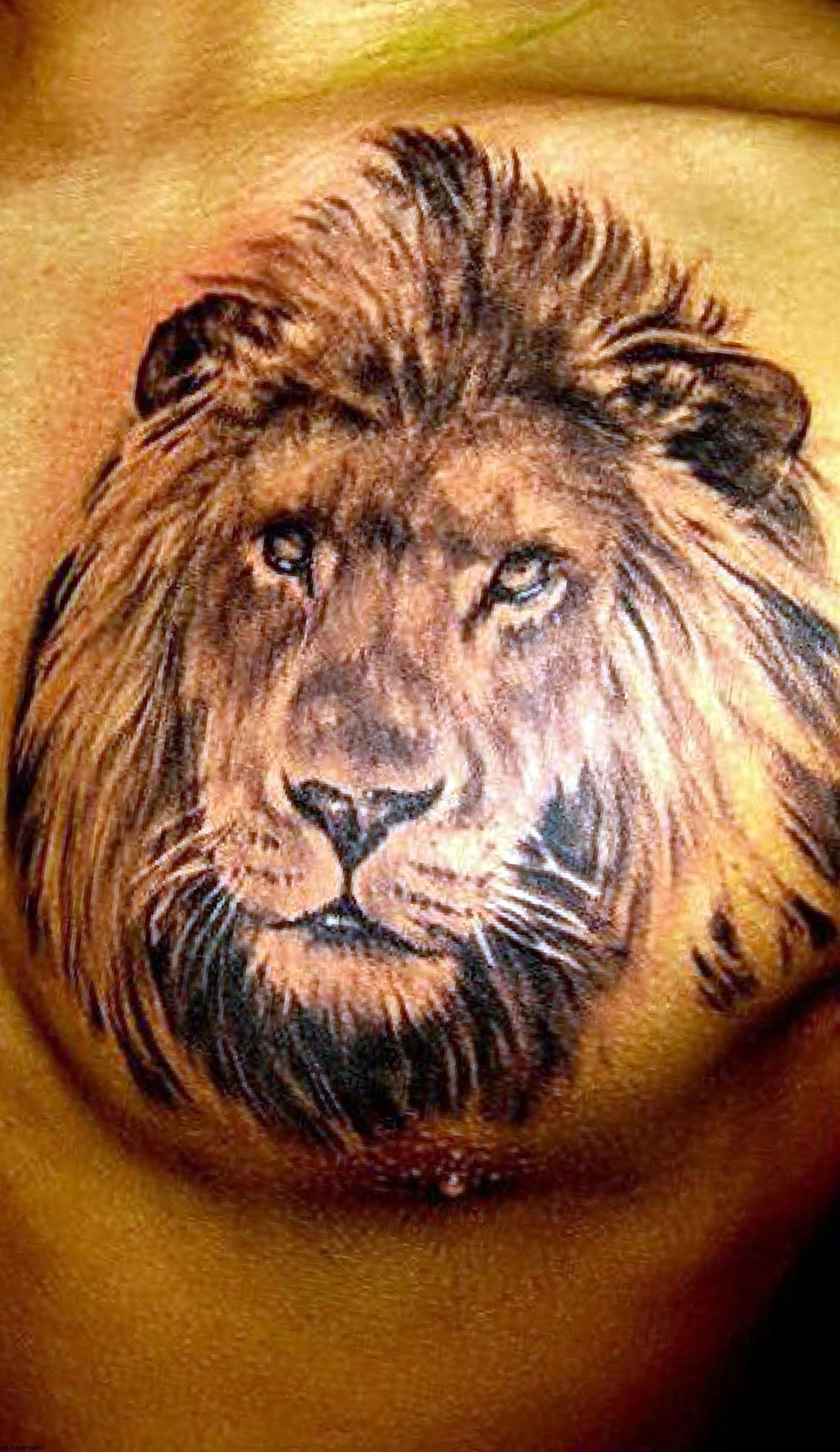 125+ Best Attractive Nature Tattoo Designs & Meanings