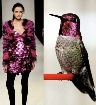 Fashion Designers Inspired By Birds Thefashionables Com Come Vestirsi Vestiti Idee