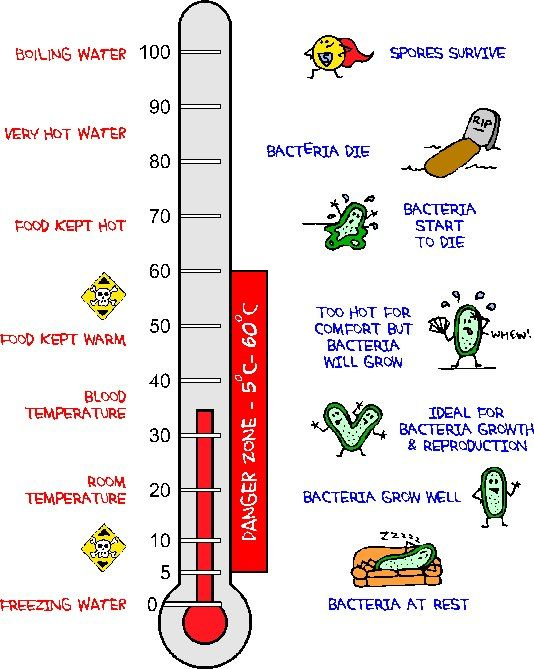Bacterial Thermometer There Are Exceptions Though For Example Listeria Monocytogenes Thrives In 4 Degrees Celsius Bio Thermometer Thrive