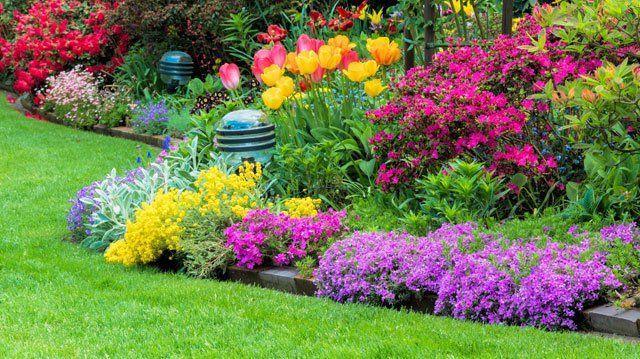 Blumenbeet anlegen - 3 Grundkriterien die Sie vorher wissen müssen