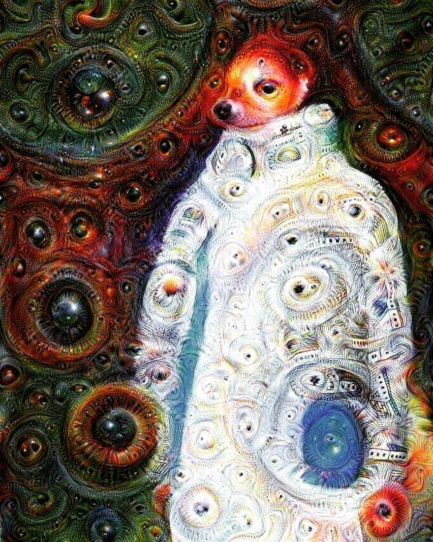Visions of dreaming machine! #deepdream #dream #dreamlust #magic #magiclust #google #googledeepdream #neuralnetwork #machinelearning #algorithm #follow #followme #followday #followjoy #followgasm #followlust #photolust #tagsmustbeoriginal #originaltags #hashtaglust #originallust #tagsgasm #likegasm #likelust #beauty #dreamify by mitroshenkovaa
