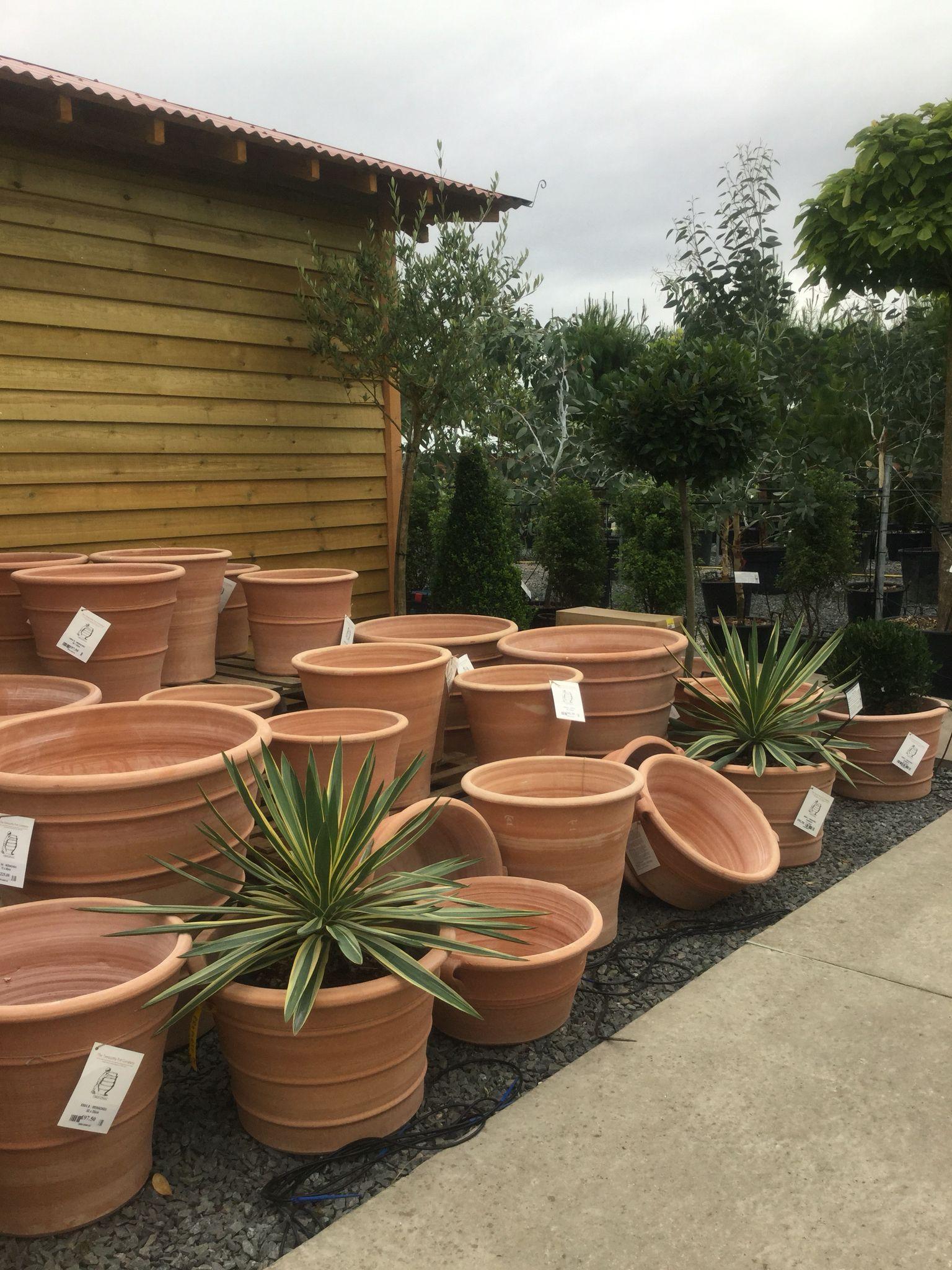 terracotta flower pots near me