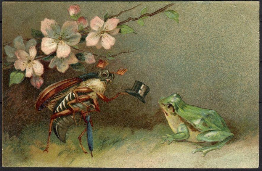 открытка с жуками точнее