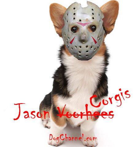 Dog Names Inspired By Horror Movies Dog Names Great Dog Names Dogs