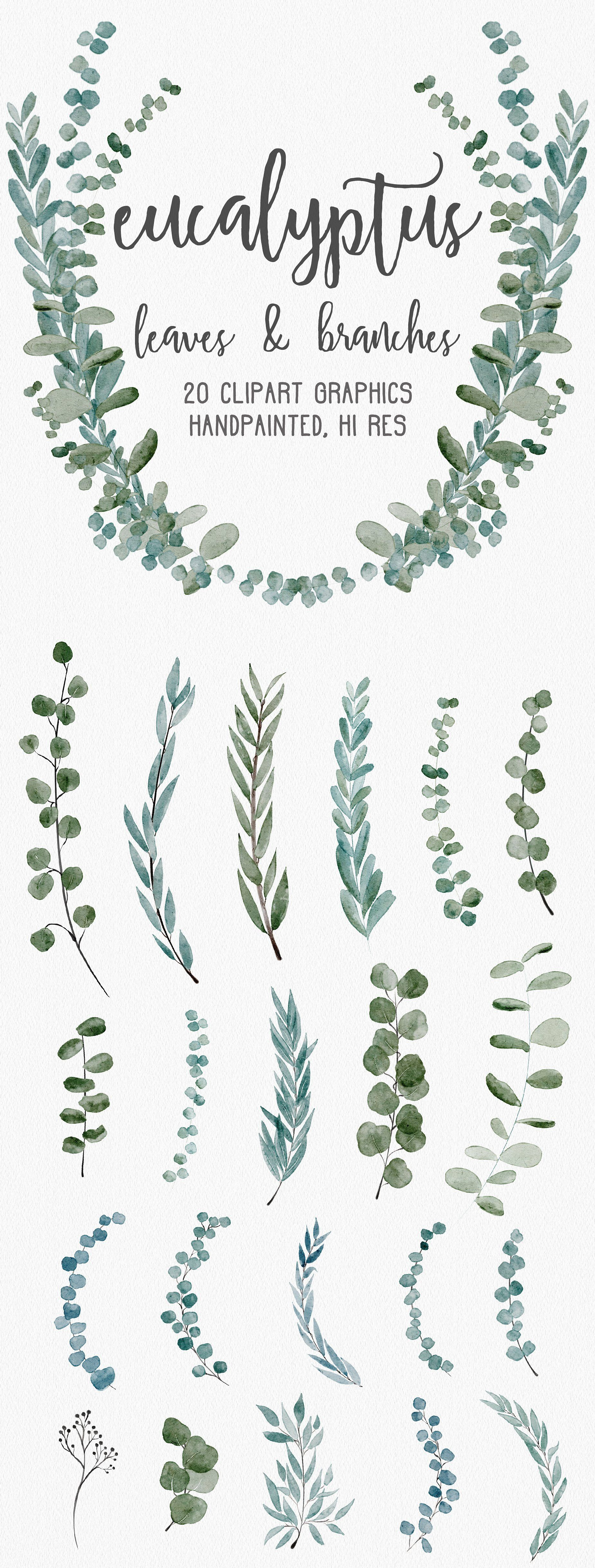 Eucalyptus Greenery Clipart Graphics By Wooly Pronto On Creativemarket Graphic Design Watercolor Wreaths