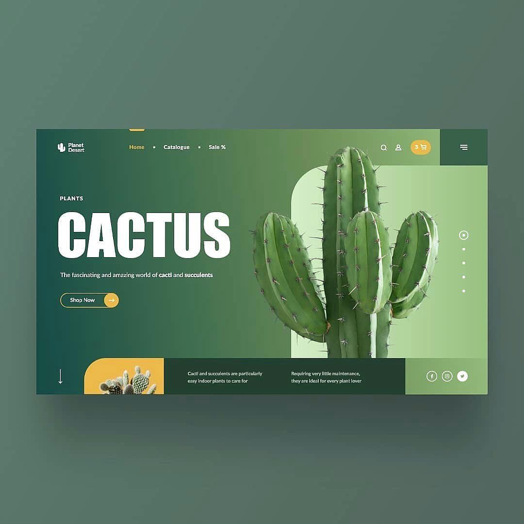 Product Page Layout For 'PLANET DESERT' | 👉🏻 Have a QUESTION? 📩 DM ...