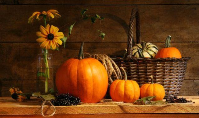 pumpkinssss