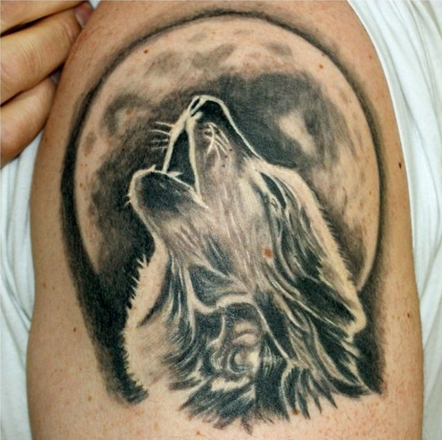 Found On Bing From Www Pinterest Com Animal Tattoos Howling Wolf Tattoo Wolf And Moon Tattoo