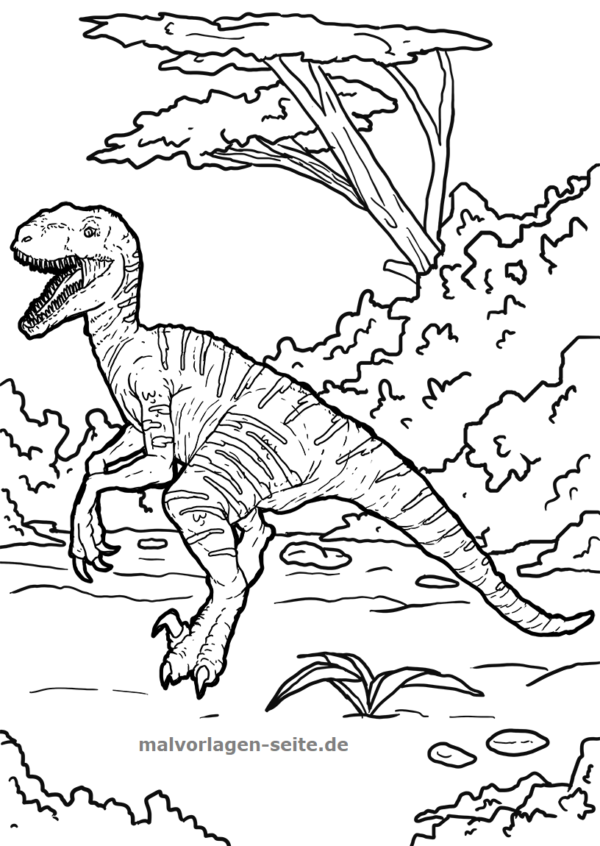 malvorlage  ausmalbild dinosaurier velociraptor