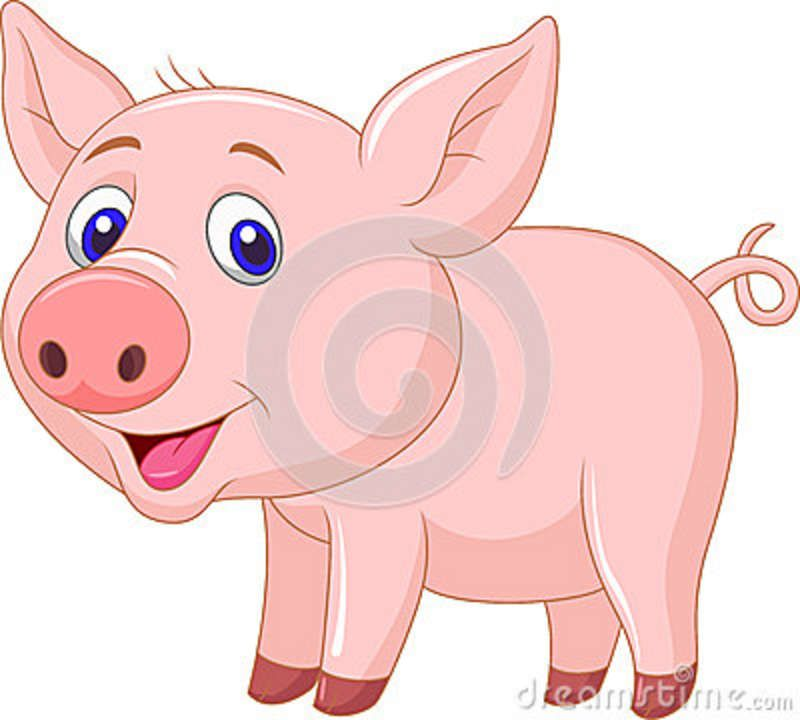 Cute Baby Pig Cartoon Pig Cartoon Cute Baby Pigs Cute Animal Clipart