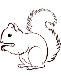 Ardilla Dibujo Facil Búsqueda De Google Squirrel Coloring Page Fall Coloring Pages Animal Coloring Pages