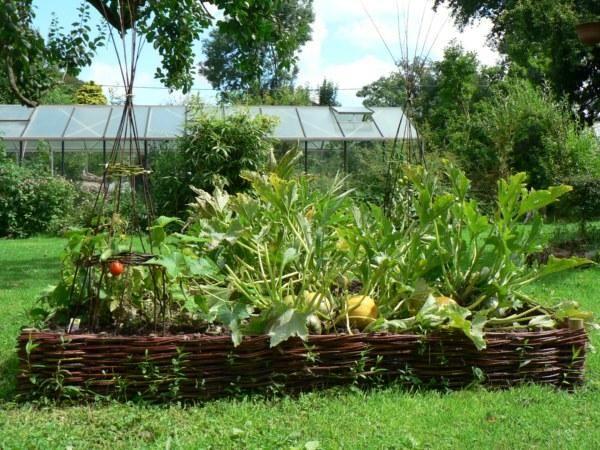 Carr potager en osier tress garden potager carr potager et jardins for Carre potager en osier 120x120
