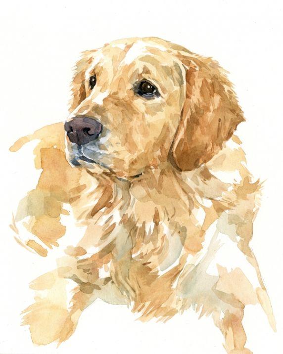 Golden Labrador Retriever 8x10 Watercolor Watercolor Dog