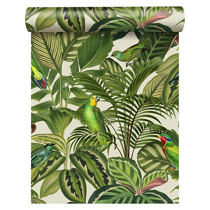 Freundin Home Collection Paradise Vliestapete Papagei Bunt Motiv 10 05 X 0 53 M Tapeten Dschungel Tapete Tapete Grun