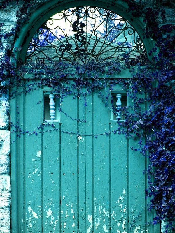Turquoise door with blue violet climbing flowers
