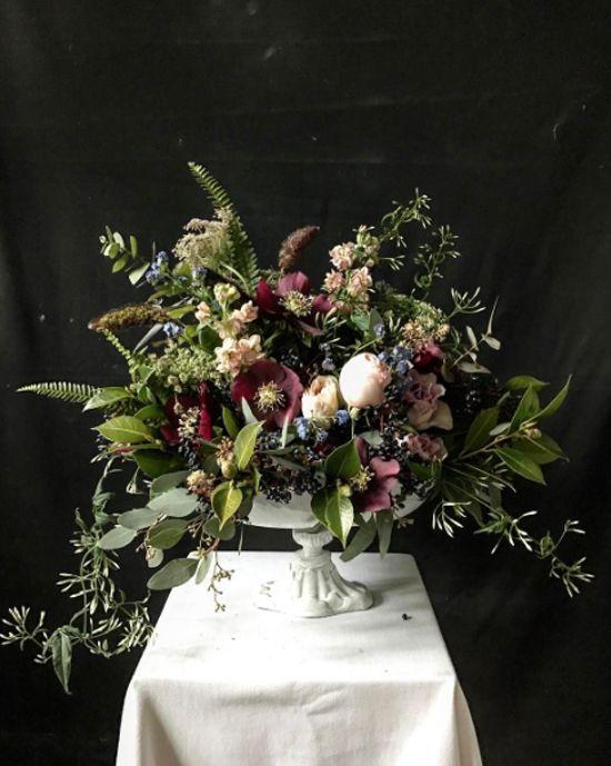 Kitten Grayson Instagram | floral | Pinterest | Flowers, Flower ...